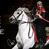 """Noble Horse - Near North Side: $12 for One Adult Ticket to See """"Quadrille: The Mystique of the Horse"""" at Noble Horse Theatre ($25 Value) or $9 for a Child's Ticket ($18 Value)"""