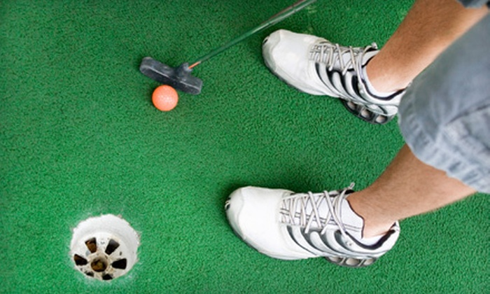 Wild Fun Center - Multiple Locations: Indoor Miniature Golf for Four or Six at Wild Fun Center (Up to 54% Off)