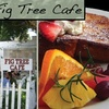 Fig Tree Café - Pacific Beach: $20 Worth of Fresh Breakfast and Lunch Fare at Fig Tree Café