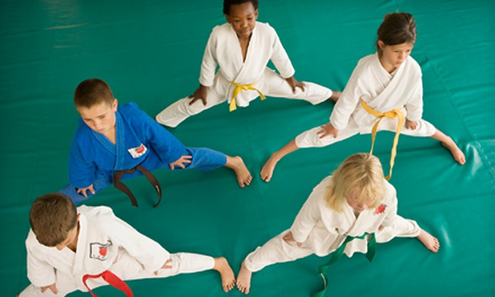 Wiseman's Martial Arts - Mt. Pearl: Eight Kickboxing Classes or One Month of Kenpo Karate Classes at Wiseman's Martial Arts (Up to 75% Off)