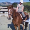 Half Off Horseback-Riding Lessons in Walnut Creek