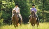 White Horse Equestrian - Streetsboro: $17 for a 45-Minute Horseback Trail Ride for One or Two at White Horse Equestrian ($35 Value)