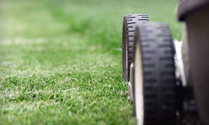 Lawn Co - Downtown Burleson: Lawn Aeration or Fertilizing Treatment and Winter Weed Spray from Lawn Co