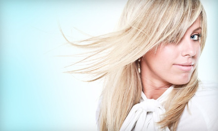Salon Pynk - Waldenburg: $45 for Haircare Package at Salon Pynk in Shelby Township (Up to $100 Value)