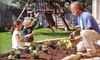 63% Off Home Vegetable Garden