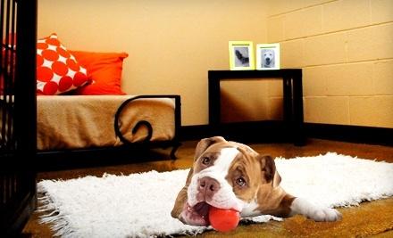 WUF Pet Resort & Spa - WUF Pet Resort & Spa in Irving