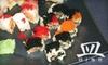 Dish Restaurant - BK - Bay Ridge & Fort Hamilton: $20 for $40 Worth of Sushi, Drinks, and More at Dish Restaurant