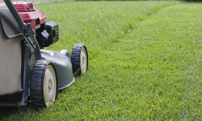 Phillips Lawn Care Service - Fort Worth: $44 for $80 Worth of Lawn-Care Tools — phillips lawn care service