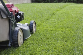 Phillips Lawn Care Service: $44 for $80 Worth of Lawn-Care Tools — phillips lawn care service