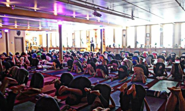 Arya Tara yoga - Crafts: 10 Yoga Dharma Hatha Classes at Arya Tara yoga (65% Off)