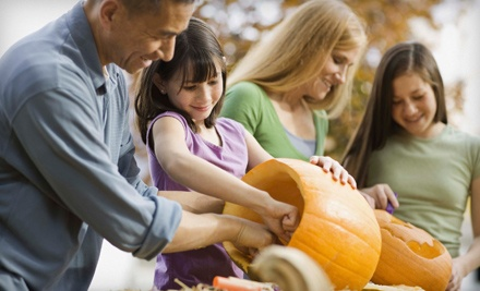 Fall Festival: Admission for Two (a $10 value) - Fall Festival in Amado