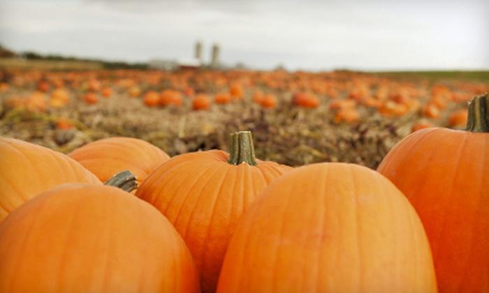 PB Pumpkins - Multiple Locations: $8 for One Medium Pumpkin and Two Activity Tickets at PB Pumpkins ($16 Value)