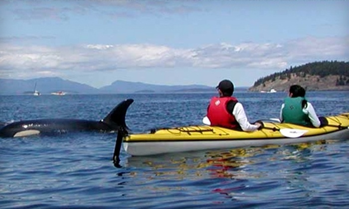 Crystal Seas Kayaking - Friday Harbor: $55 for a Three-Hour San Juan Island Kayaking Tour from Crystal Seas Kayaking