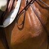 Up to 54% Off Horseback Riding in Marietta