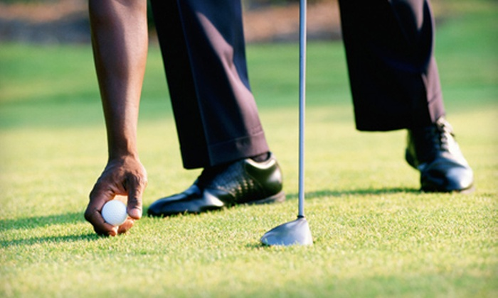 Ascarate Golf Course - Collingsworth: 15 Buckets of Range Balls or One-Hour Golf Lesson with Range Balls at Ascarate Golf Course (Up to 60% Off)