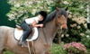 Archway Equestrian Sports - Bothell: $39 for Semiprivate Horseback-Riding Lesson at Archway Equestrian Sports in Bothell