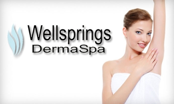 Wellsprings DermaSpa - Northwest Austin: $99 for Three Microdermabrasion or Laser Hair-Removal Treatments at Wellsprings DermaSpa (Up to $300 Value)