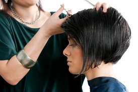 TJ Salon at Salon DVine: Haircut with Shampoo and Style from TJ Salon at Salon Dvine (57% Off)