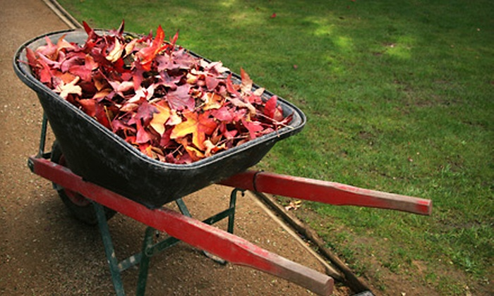 Property Scope - Northfield: Lawn Aeration and Seeding or Fall-Leaves Cleanup from Property Scope (Up to 62% Off)