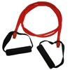 Dual-Strand Resistance Bands with Free Total-Body Workout Guide