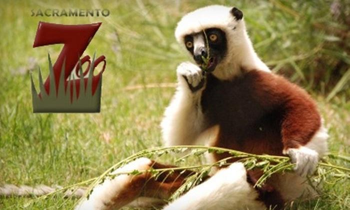 Sacramento Zoo - Southwestern Sacramento: $25 for Admission, Rides and More for a Family of Four at Sacramento Zoo ($51.50 Value)