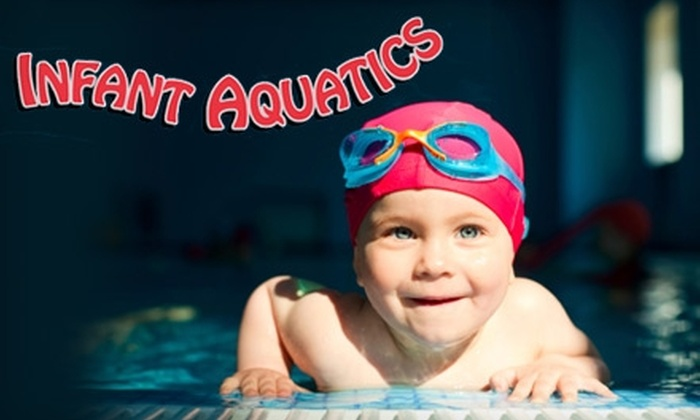 Infant Aquatics - Willoughby: K.I.S.S. Swim Program Lessons from Infant Aquatics in Willoughby (Up to $288 Value). Choose from Three Options.