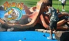 Pelly's Mini Golf - Del Mar Heights: $9 for One Round of Mini Golf for Two at Pelly's Mini Golf in Del Mar (Up to $18 Value)