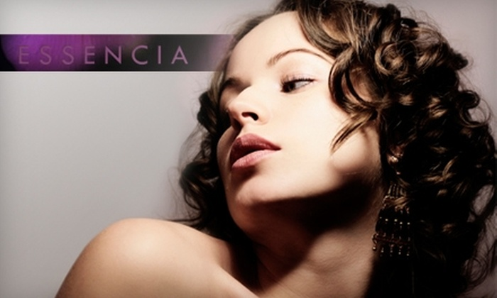 Essencia Salon and Day Spa - Wilmington-Newark: $50 for Hair Color, Cut, and Blow-Dry at Essencia Salon and Day Spa ($100 Value)