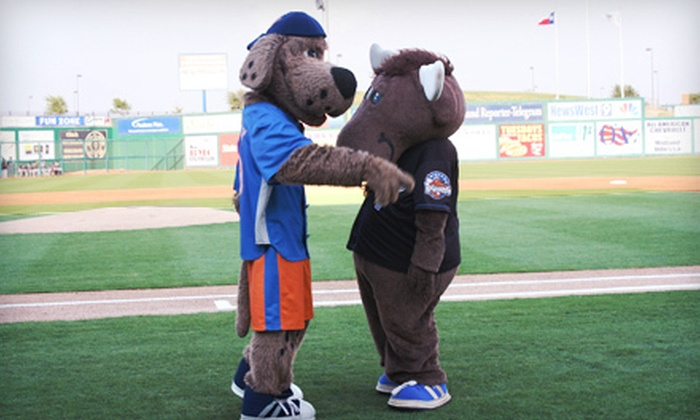 Midland RockHounds - Bounce: Game-Day Package for Two or Four to See the Midland RockHounds at Citibank Ballpark on April 13 (Up to Half Off)