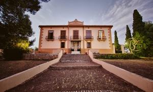Bodega Vera de Estenas: Cata de vinos y visita guiada con aperitivos para dos o cuatro personas desde 9,90 € en Bodega Vera de Estenas