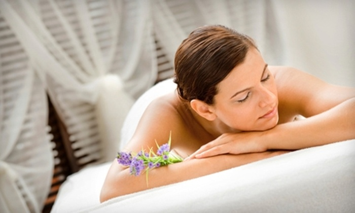 Liza's Day Spa - Visalia: $45 for a Massage or Microdermabrasion at Liza's Day Spa in Visalia ($110 Value)