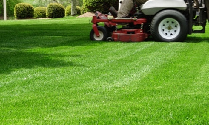 Southern Grounds - Birmingham: $25 for $50 Worth of Lawn-Care Services from Southern Grounds