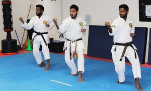 Middle East Karate Academy: One-Month of Karate Classes For Kids (AED 79) or Adults (AED 99) at Middle East Karate Academy
