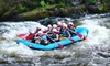 Wildman Adventure Resort **DNR** - Silver Cliff: Four-Day Adventure Camp for Two or Four at Wildman Adventure Resort in Athelstane (Half Off)