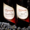 61% Off Tour at Valenzano Winery in Shamong