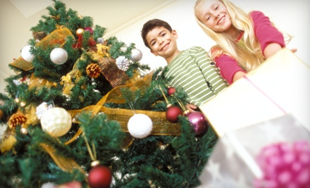 $50 Groupon to PB Christmas Trees at 6705 La Jolla Blvd.  - PB Christmas Trees in San Diego