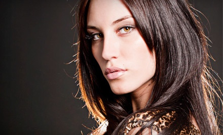 Appointment, Stylist Cut, Style, and Blow-dry (up to a $60 value) - Dramatics NYC in New York