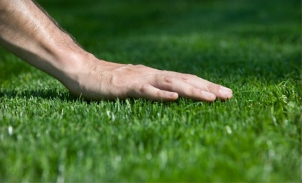 $50 Groupon to Pleasant Green Grass - Pleasant Green Grass in