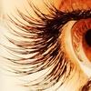 60% Off Eyelash Extensions at Eye Deux
