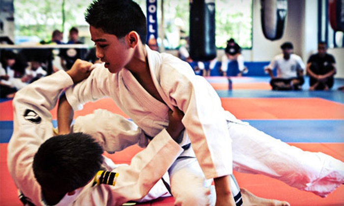 Guerrilla Jiu-Jitsu Martial Arts and Fitness - Multiple Locations: 10 or 20 Kickboxing and Martial-Arts Classes at Guerrilla Jiu-Jitsu Martial Arts and Fitness (Up to 90% Off)