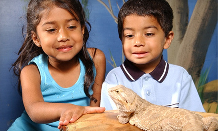 Garden State Discovery Museum - Greentree: Garden State Discovery Museum Visit for Two or Four (Up to 54% Off)