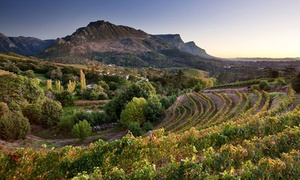 The Constantia Wine Tour: Guided Wine Tour with Tastings, Lunch and Site Tour for R2 999 for Two with The Constantia Wine Tour