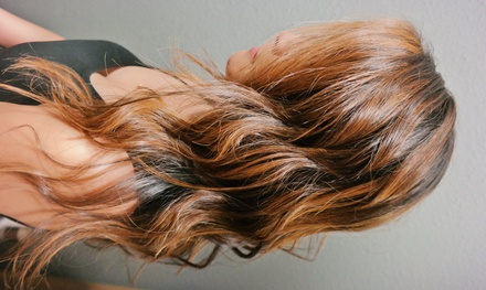 Up to 56% Off Haircut and style or color at Alisha Cheney Salon