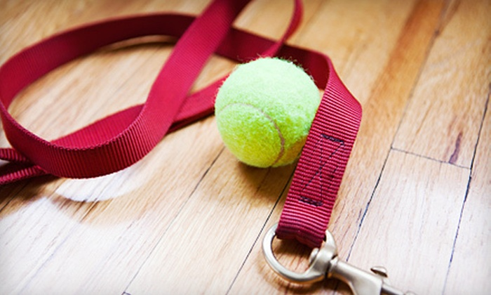 Ocean Grove Pet Boutique - Asbury Park: $15 for $30 Worth of Pet Supplies and Toys at Ocean Grove Pet Boutique