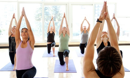 6 or 12 Yoga Classes with Three-Hour Introductory Workshop at Tool Shed Training, LLC (Up to 53% Off)