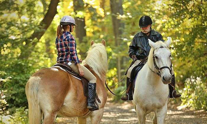 Chateau Stables - Chateau Stables: Hour-Long Horseback Ride Through Central Park for 1 or 2 from Chateau Stables (Up to 30% Off)