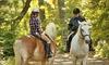 Up to 30% Off Horseback Ride Through Central Park