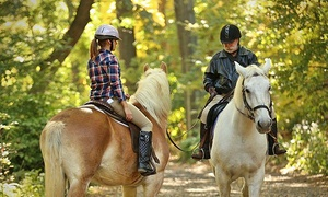 Chateau Stables: Hour-Long Holiday Horseback Ride Through Central Park for 1, 2, or 3 from Chateau Stables (Up to 39% Off)