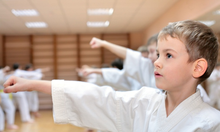 Fighting Griffin Family Karate - Guelph: Month of Karate Classes for One or Two at Fighting Griffin Family Karate (Up to 80% Off). Four Options Available.
