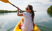 $25 Full-Day Canoe, Kayak or Rowboat Hire - One Craft on Weekends or Two Midweek with Audley Boatshed (Up to $90 Value)